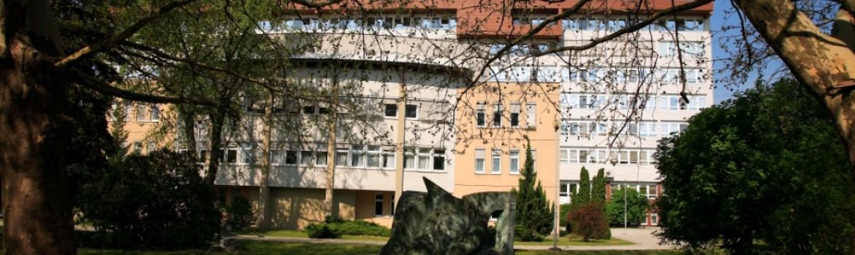 Kórház kép3